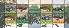 NEW Israel Stamps Amphibians 2014 Collection Album Frog Salamander MNH