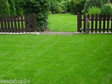 10 kg Rasensamen Berliner Tiergarten Rasen Grassamen Zierrasen Saat Qualität WOW