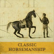 Horsemanship & Riding 142 Rare Vintage Books on DVD Racing Equitation Equestrian