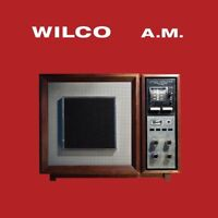 Wilco - A.M. Deluxe Edition 2x 180g vinyl LP IN STOCK NEW/SEALED AM Jeff Tweedy