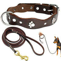 Small Dog Puppy Genuine Leather Dog Collar & Lead for Chihuahua Yorkie Pit Bull