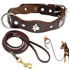 Paw Studded Genuine Leather Dog Collar and Leash Brown Adjustable Chihuahua XS-M
