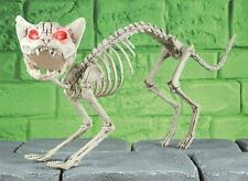 Halloween Cat Kitty Dead Zombie Red Eyes Light Up Skeleton Party Decoration Prop