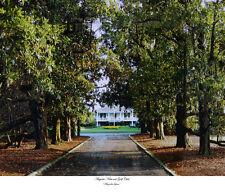 Augusta National Golf Club Clubhouse Magnolia Lane   11x14