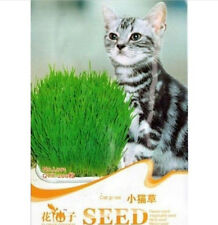 200 Seeds Cat Grass Seed For Your Cat Food Pet Food Pet Grass 1 Bag 200 Seeds