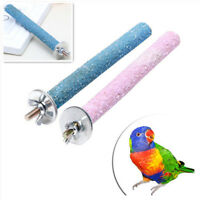 FT- Pet Parrot Chew Bite Paw Grinding Rod Toy Bird Cage Play Stand Perches New T