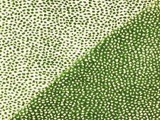 Old World Weavers Scalamandre Flurry Leaf Cheetah Pattern Uph Chenille Fabric