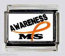 MS AWARENESS Multiple Sclerosis 9mm ITALIAN CHARMS CHARM for modular bracelets