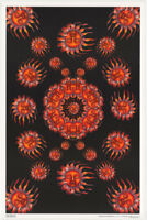 POSTER: PSYCHEDELIC :  SLEEPING SUN  - FLOCKED -  FREE SHIP #FL3317   RC42 H