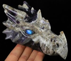 "5.8"" FLUORITE Carved Crystal Dragon Skull with Labradorite Eyes"