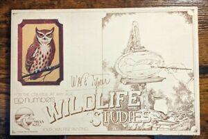 WMP Tyler Wildlife Studies Swan Kit Owl 1983 L&S Woodworking Paint Set