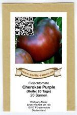 Cherokee Purple - alte Indianer-Tomate - Fleischtomate - 20 Samen