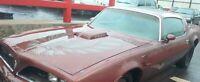 Used Original 1977 1978 1979 80-81Pontiac Firebird Trans Am Hood - Shaker incl!