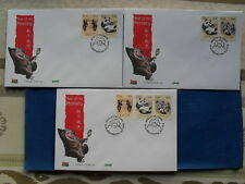 Irland FDC(3) ESST Dublin 30.01.2004 Zdr. ex MS YEAR OF THE MONKEY