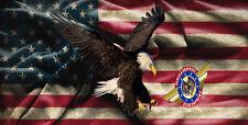 "Eagle, American Flag ""custom personalize License Plate"""