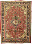 Vintage Floral Geometric Oriental Rug, 8'x11', Red/Blue, Hand-Knotted Wool Pile