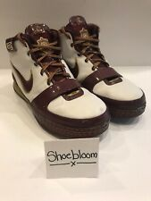 Nike Zoom LeBron VI 6 Christ The King CTK Cleveland Cavs Playoffs PE Size 11