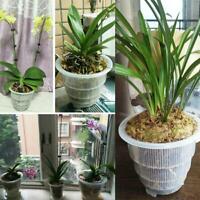 Mesh Pot Clear Orchid Pot Plastic Flower Planter Home Hot Pot Garden G0K4