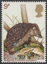 Hedgehog ( Erinaceus Europaeus )  illustrated on  1977  unmounted mint GB stamp
