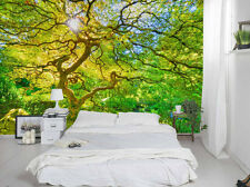 Japanese Maple in the Spring 12' x 8' (3,66m x 2,44m)-Wall Mural