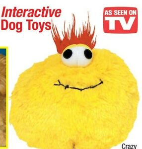 Gazoos Interactive Dog Toy Motion Activated Crazy Miss Daisy