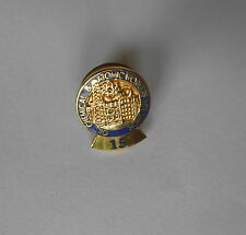 Cool Vintage Oil Chemical & Atomic Workers Int'l Trade Union 15 Year Pin Pinback