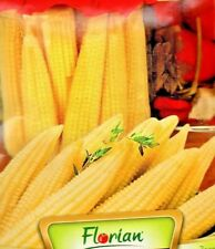 SWEET BABY CORN - MINIGOLD -  60 HIGH QUALITY VEGETABLE SEEDS /699