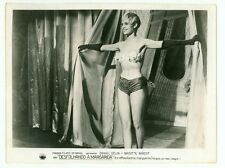 "BRIGITTE BARDOT SEXY ORIGINAL STUDIO PHOTO ""PLUCKING THE DAISY"" STRIPTEASE 1956"