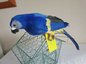 Artificial Large tropical blue Parrot Bird very realistic feathers & colours