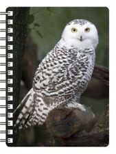 Snow Owl 3D Notebook