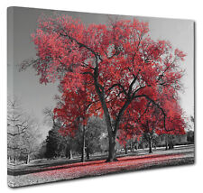 Red Lone Single Tree Landscape Canvas Print Wall Art Picture Size 51x76cm