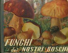 Funghi dei nostri boschi. 25 tavole su bozzetti dal vero di Luigi Proner 19 dise