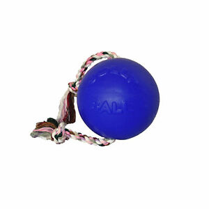 Jolly Pets Romp-n-Roll 6 inch Blueberry | Rubber Ball with Rope for Dogs