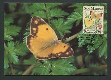 SAN MARINO MK FAUNA SCHMETTERLINGE BUTTERFLIES CARTE MAXIMUM CARD MC CM d6271