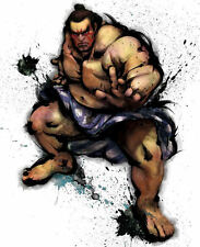 Framed Game Character Print – Honda Street Fighter (Picture Poster Art XBOX PS4)