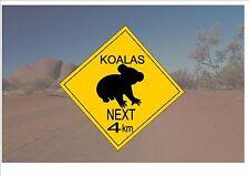 Segnale STRADALE stile australiano Australia Cartello Stradale novità divertente Koala Orso sign