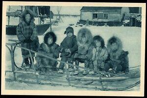 CP USA ALASKA  cercle arctique   ( la jeune génération ... en fourrures )  ( 8)