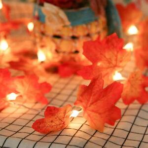 10 LED Guirlande Lumière Feuille Érable Chaîne Éclairage Décor Arbre Noël Maison