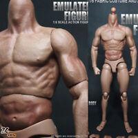 "US ZC Toys 1/6 Scale  HT Man Muscular Body Fit 12"" Hot Toys Male Head Sculpt"