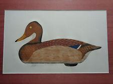 Arthur Nevin Mallard Hen Decoy Print, Signed 12/150 Modoc S.C. 1960