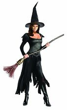 Wicked Witch Women's XS Adult or Teen Oz The Great Dress & Hat Halloween Costume