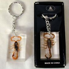 REAL SCORPION KEYCHAIN bug insect novelty key chains novelties real bugs inside