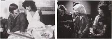 Adrienne Barbeau Fog John Carpenter Lot 10 Photos Original Vintage 1980