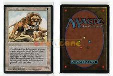 MTG Magic - Leoni della Savana - Lions - 1ª Ed. Italian Revised FBB 1994 OTTIMA