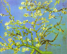 Dream-art Oil painting Vincent Van Gogh - Branches and flowers of plum canvas