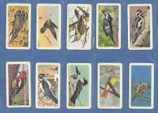 BROOKE BOND CANADA - RARE SET OF 48 CARDS - CANADIAN / AMERICAN SONGBIRDS - 1966