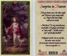Laminated Prayer Cards eBay - My Surprise in Heaven They Were Surprised HC9-180E