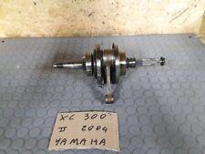 Yamaha XC 300 2004 Alberto Motore