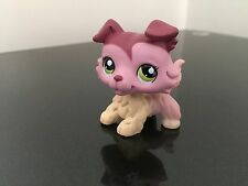 Littlest Pet Shop LPS Collie # 1723 Mauve / Cream Green Eyes USA Seller