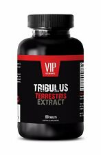 Tribulus  - TRIBULUS TERRESTRIS EXTRACT NATURAL - Elevates Testosteron level, 60